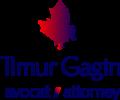 Tim Gagin